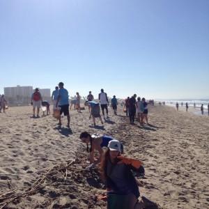 beach cleanup 2016