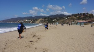 Another successful beach cleanup complete! On Saturday May 21, 2016 Team Marine and Marine Biology students attended Heal the Bay's Nothin' But Sand beach cleanup at Will Rodgers State Beach […]